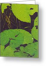 Tadpoles Greeting Card