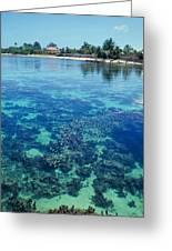 Tahiti Papeete Greeting Card
