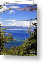 Tahoe Blue Greeting Card