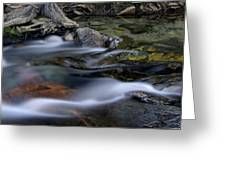Tahoe Eagle River Greeting Card by Dave Dilli