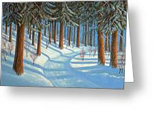 Tahoe Forest In Winter Greeting Card