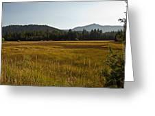 Tahoe Keys Meadow Greeting Card
