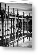 Tahoe Pier Reflection Greeting Card