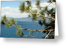 Tahoe Through The Pines Greeting Card