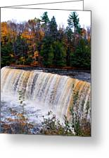 Tahquamenon Falls I Greeting Card