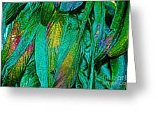 Tail Feathers Greeting Card