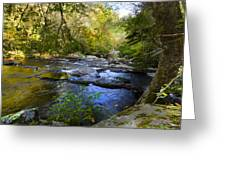 Take Me To The River Greeting Card