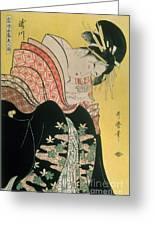 Takigawa From The Tea House Ogi Greeting Card