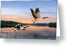 Taking Flight Greeting Card