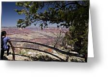 Taking In The Grand View Greeting Card