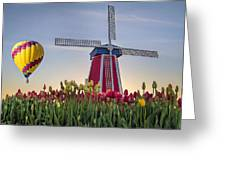 Taking Off At Tulip Field Greeting Card
