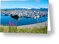 Tall Fireweed By The Marina Along Homer Spit-ak  Greeting Card