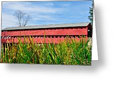 Tall Grass And Sachs Covered Bridge Greeting Card