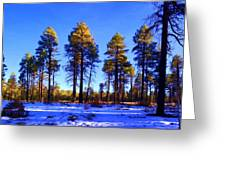 Tall Ponderosa Pine Greeting Card