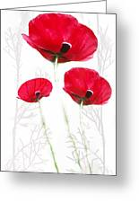 Tall Poppies Greeting Card