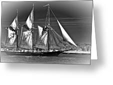 Tall Ship Bw Greeting Card