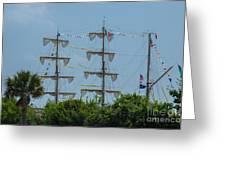 Tall Ship Mast Charleston  Greeting Card