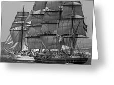 Tall Ship Stad Amsterdam Greeting Card