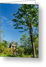 Tall Tree And Temple Greeting Card