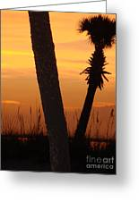 Tampa Beach Greeting Card
