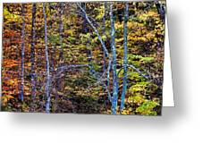 Tangled Tennessee Greeting Card