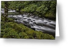 Tanner Creek Greeting Card