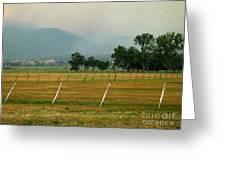 Taos Fields Greeting Card by Steven Ralser