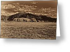 Taos Mountain In Platinum  Greeting Card