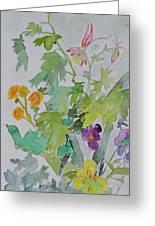 Taos Spring Greeting Card