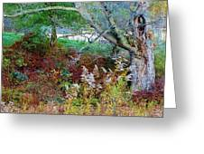 Tapestry Of Colors Greeting Card