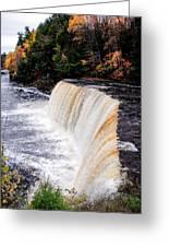Taquamenon Falls II Greeting Card