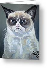 Tard - Grumpy Cat Greeting Card