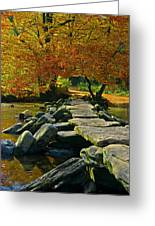 Tarr Steps In Somerset Greeting Card
