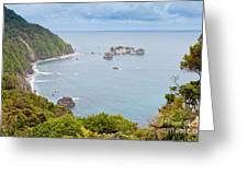 Tasman Sea At West Coast Of South Island Of New Zealand Greeting Card