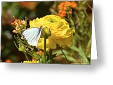 Taste Of Spring Greeting Card