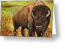 Tatanka, Buffalo  Greeting Card