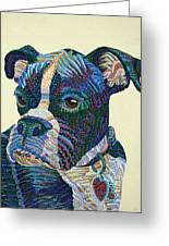 Tater - Portrait Of A Boxer Greeting Card by Erika Pochybova