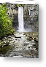 Taughannock Falls And Creek Greeting Card