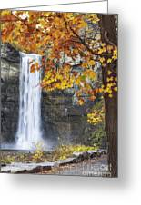 Taughannock Falls And Maple Greeting Card