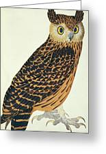 Tawny Fish Owl Photograph By Natural History Museum London Science Photo Library