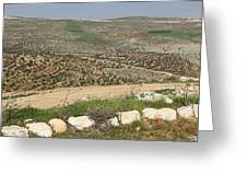 Taybeh Landscape Greeting Card