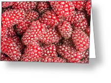 Tayberries  Greeting Card