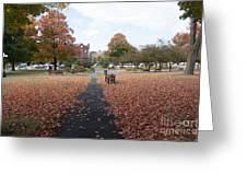 Taylor Park St Albans Vermont Greeting Card