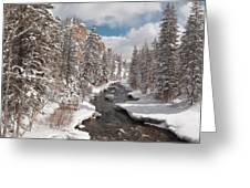 Taylor River Winter Greeting Card