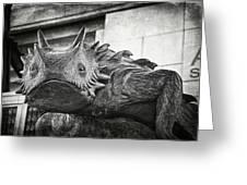 Tcu Horned Frog 2014 Greeting Card