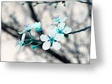 Teal Blossoms Greeting Card