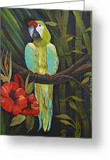 Teal Chartreuse Parrot Greeting Card