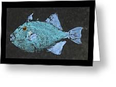 Gyotaku Triggerfish Greeting Card by Captain Warren Sellers
