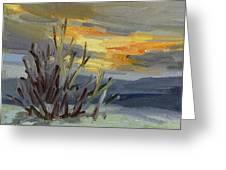 Teanaway Valley Winter Greeting Card