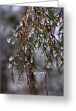 Tears Of Ice Greeting Card